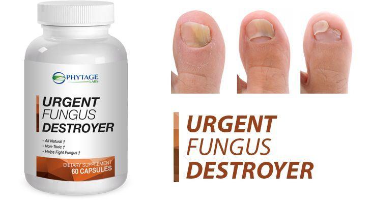 Urgent Fungus Destroyer Review